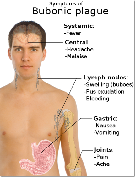 plague bubonic symptoms