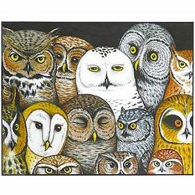 Owl-Whos-Hoo-Wall-Art-Print