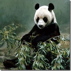 pandacropped2